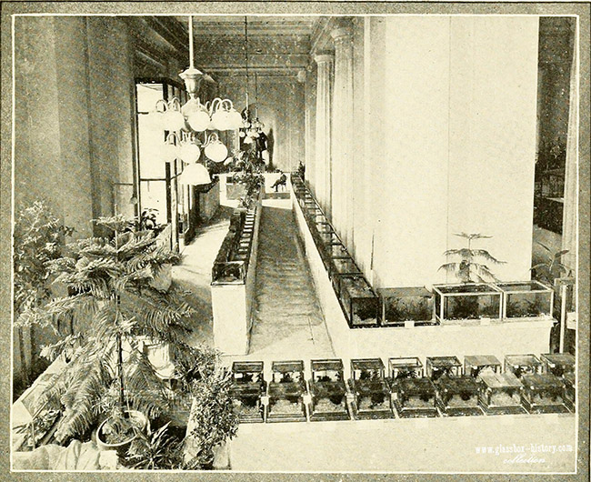 aquariumbulletin1917brook_0006_wm_s.jpg